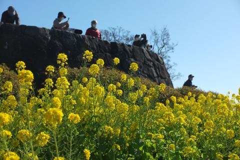 二宮吾妻山公園の展望台