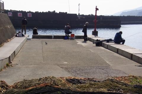 早川漁港の釣り人