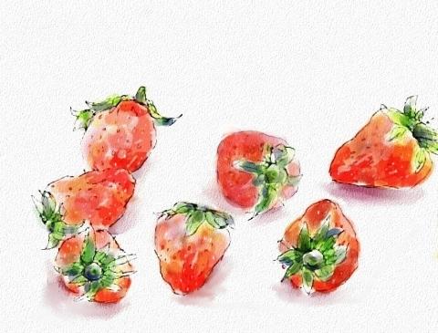 苺3_bak_bak