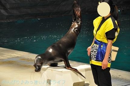miurahanto202104055.jpg