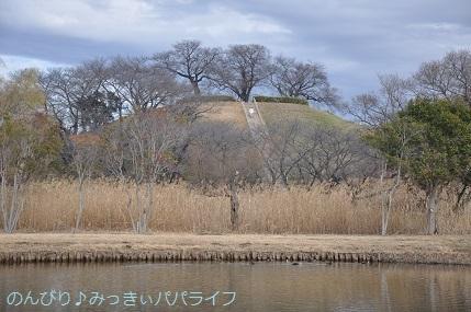 sakitamakofunkoen202003.jpg