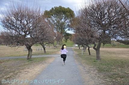 sakitamakofunkoen202004.jpg