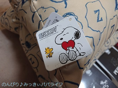snoopycushion20210303.jpg