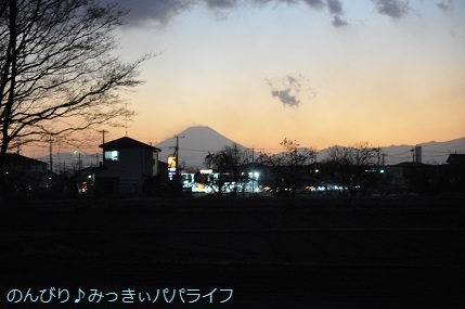 yakitoriyakiton2020123001.jpg
