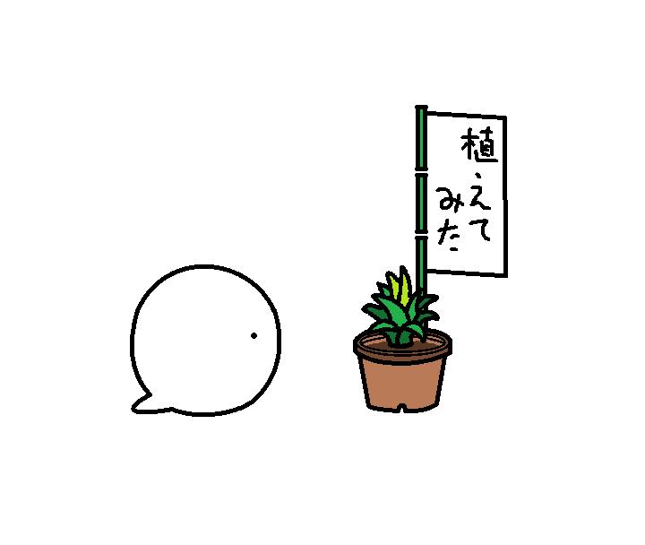 550つちのこ台湾パイン騒動後日談3