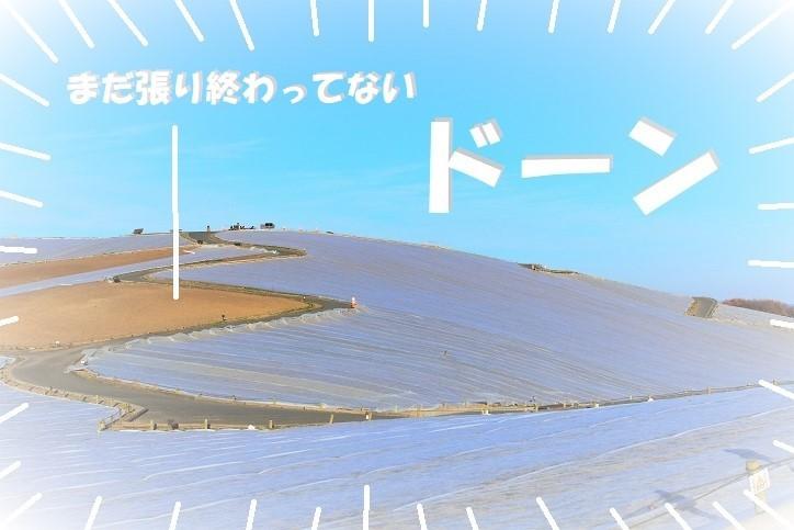 ppDSC_pp7215 (2) - コピー
