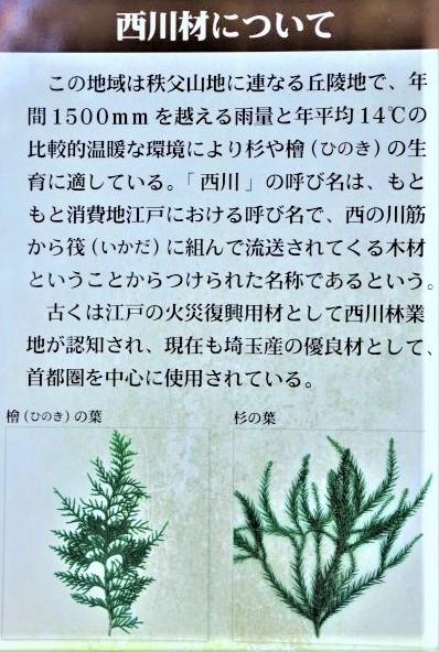 ☆IMGP6162