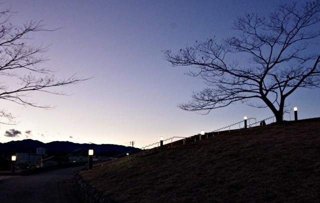 ☆IMGP6438