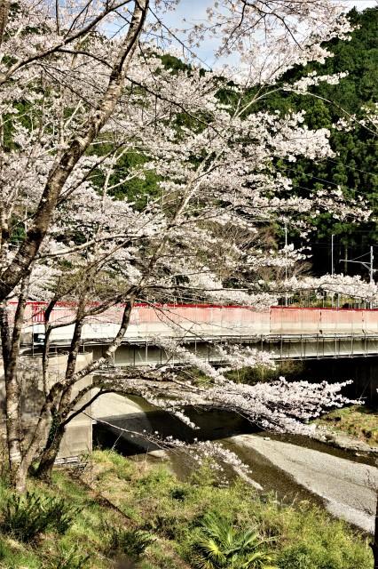 ☆IMGP7471有間橋