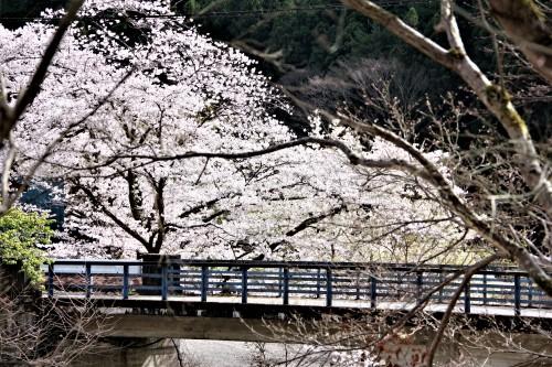 ☆IMGP7474相生橋