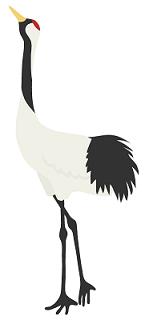 bird_tsuru_5709.png