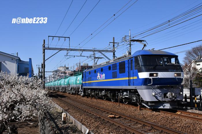 20210223-DSC_3659.jpg