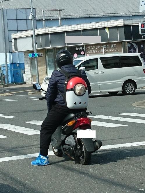 DSC_2871バイク猫ガン見