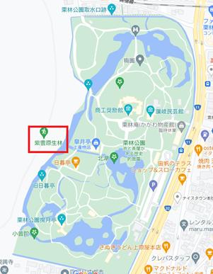 栗林公園周辺のグーグルマップ