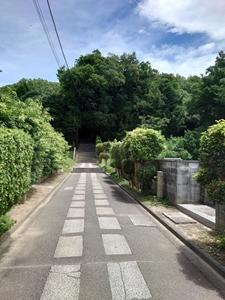 阿智神社への道