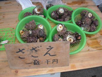 葉山朝市3.JPG
