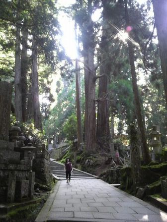 高野山研修07(奥の院).JPG