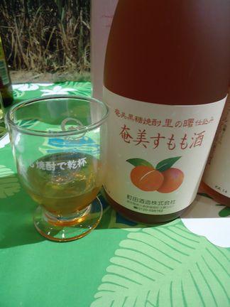 鹿児島フェア46(奄美すもも酒).JPG