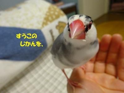 DSC01359済