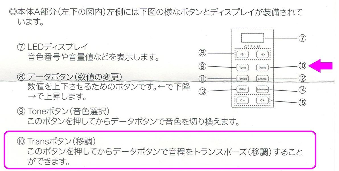 1-1-IMG_0005.jpg