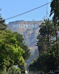 1-ハリウッド-1