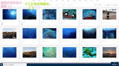 917-ブログ10:Adobe-1