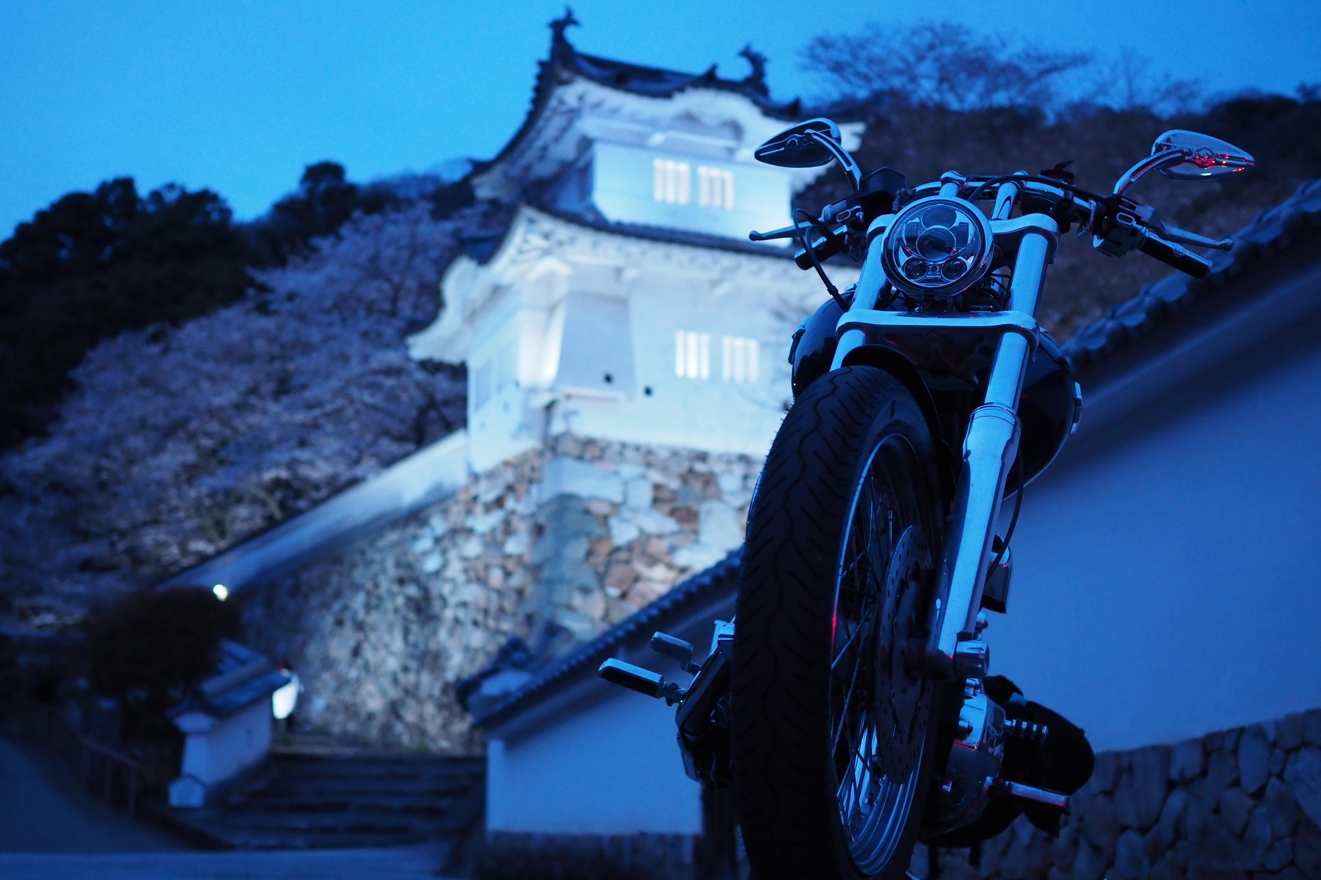 龍野城 ライトアップ 桜 バイク ハーレー 兵庫県 たつの市 ツーリング