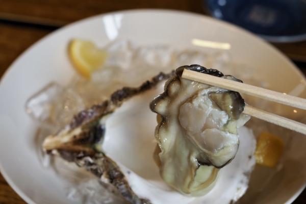 舞鶴ツーリング ランチ 大六丸 海鮮丼 海鮮 岩牡蠣