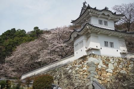 たつの薄口醤油ツーリング 播磨の小京都 龍野城 龍野城隅櫓 ハーレー 春 桜