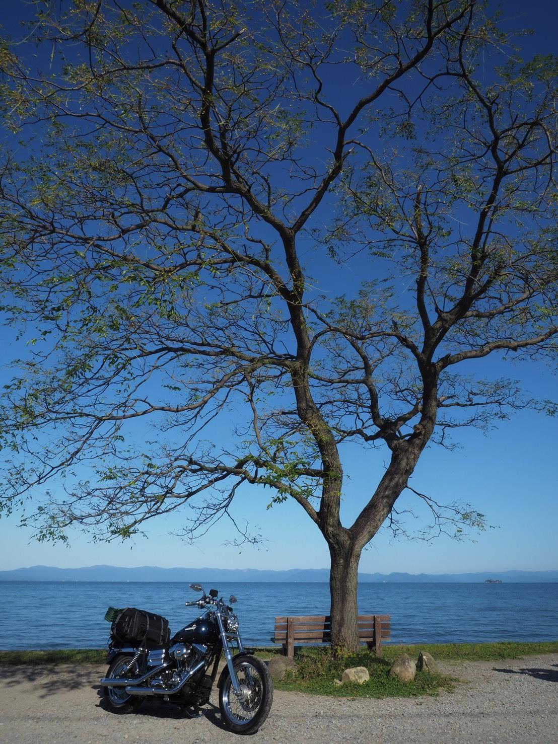 ぴーきちハーレーブログ 奥琵琶湖キャンプツーリング あのベンチ インスタ映え