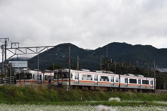 2021年9月19日撮影 飯田線は伊那新町駅にて 207M 313系到着