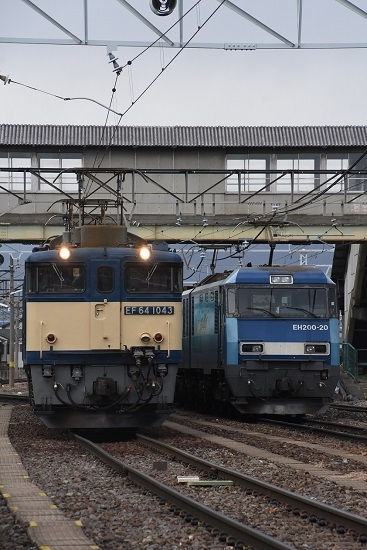 2021年1月16日撮影 南松本にて 西線貨物8084レ EF64とEH200