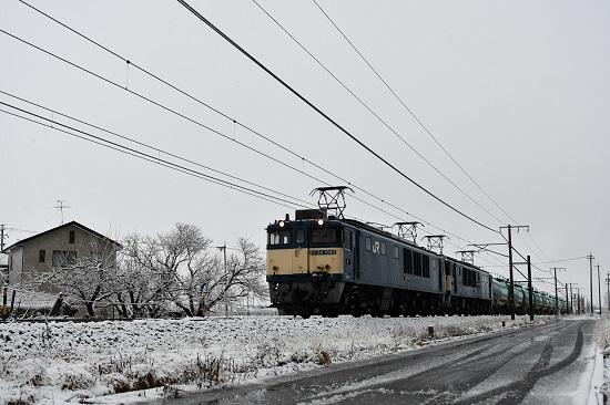 2021年3月13日撮影 西線貨物6088レ 雪が積もった木をバックに
