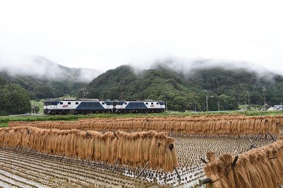 2020年9月26日撮影 篠ノ井線8467レ 聖高原ストレート裏からはぞ掛けと