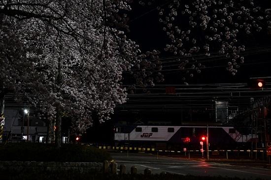 2021年4月3日撮影 南松本にて桜と絡めて 西線貨物6089レ EF64機回し