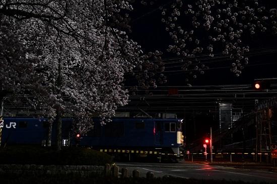2021年4月3日撮影 南松本にて桜と絡めて EF64-1022号機