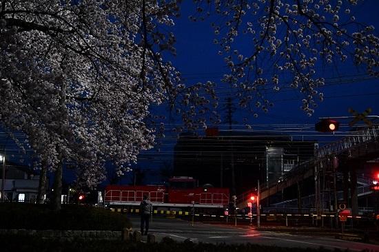 2021年4月3日撮影 南松本にて桜と絡めて HD300と