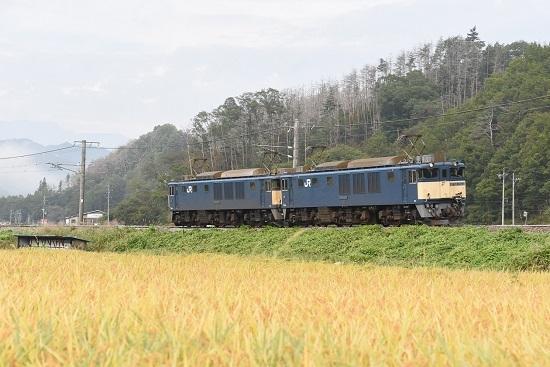 2020年10月3日撮影 篠ノ井線8467レ 坂北カーブにて稲穂とEF64原色重連