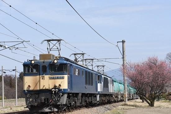 2021年3月20日撮影 西線貨物8084レ 紅梅とEF64-1033+1020号機