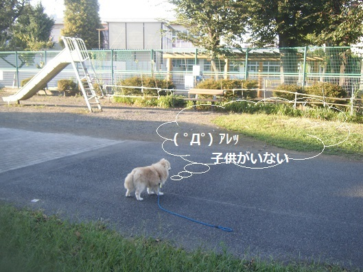 9月23日クリエイト前 (7)