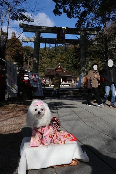 2021.01.18 初詣(出雲神社)-2