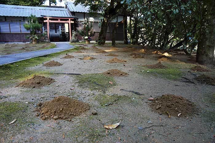 釣殿神社(西畑) 砂モチ2