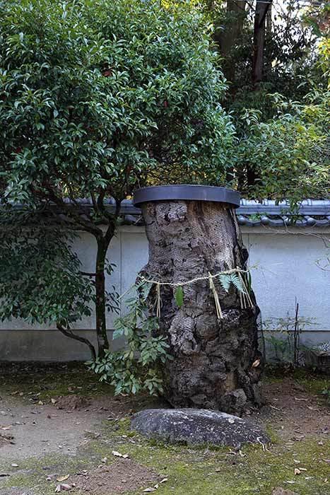 釣殿神社(西畑) 砂モチ3