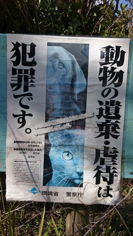 看板園内の数ヶ所に2020年6月1日の動物愛護法改正前から貼られている、古い色褪せて読み取りにくい環境省のポスターなどが残っていました。