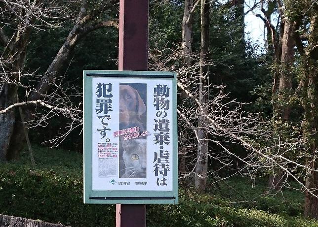 看板第2駐車場から展望塔への登り口に環境省の新しいポスター《動物の遺棄・虐待は犯罪です》が掲示されていました。