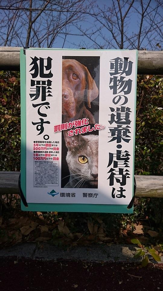 ma62月7日に確認すると、アジサイが植えてある所の上にある東屋にも、環境省の新しいポスターが貼られていました。