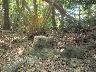 3アマミキヨの石
