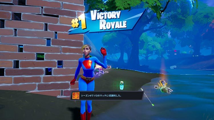 フォートナイト switch VICTORY ROYALE