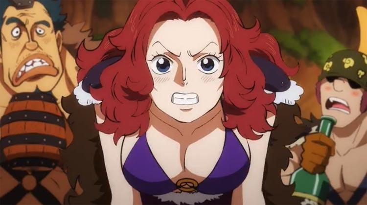 ワンピース アニメ 百十海賊団