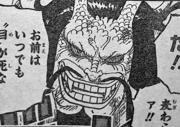 ワンピース カイドウ 人獣型